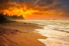 Ocean sunset at sea beach Royalty Free Stock Photos