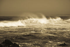 Ocean surf, Monterey California Royalty Free Stock Image