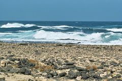 Ocean surf waves roll on the rocky beach Stock Photography