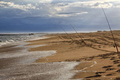 Ocean Sygna Fishing rods. Ocean clear sandy beach at sunset with a string of fishing rods vertically holded at sea surf catching pacific salmon in Australia royalty free stock photo
