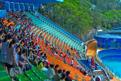 Ocean theatre of ocean park hong kong Royalty Free Stock Image