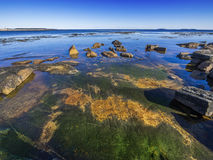 Ocean tide pools Royalty Free Stock Image
