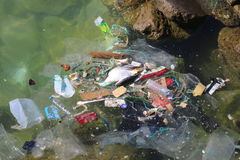 Ocean Trash. Marine debris, including plastics, paper, wood, metal and other manufactured materials is found on beaches worldwide and at all depths of the ocean royalty free stock photography