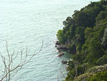 Ocean and the tropical nature. A view of the ocean and the tropical nature stock images