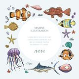 Ocean tropical exotic round card. royalty free illustration