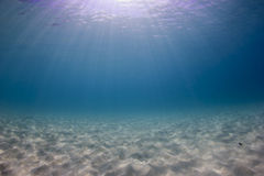 Ocean underwater background Stock Photos
