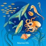 Ocean Underwater Life Illustration. Ocean Underwater Life Background. Sea Underwater Life Vector Illustration. Marine Underwater Life Design. Underwater Life Royalty Free Stock Photos