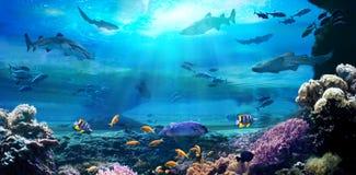 Ocean underwater with marine animals. 3D illustration