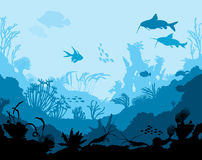 Ocean underwater world with animals Royalty Free Stock Image