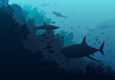 Ocean underwater world with shark. Illustration Stock Image