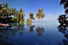 Ocean View. Beautiful ocean view with pool and palm, the maledives Stock Photos