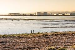 Ocean view across the San Francisco Bay wetlands Stock Images