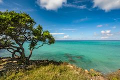 Ocean view. A beautiful beach and ocean view Royalty Free Stock Photos