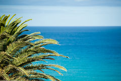 Ocean view of Fuerteventura Royalty Free Stock Photo