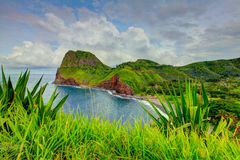 Ocean view. Grass at the foreground. Road to Hana, Maui, Hawaii Royalty Free Stock Photo