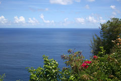 Ocean view, Guam. Overlooking the ocean on drive to Ritidian Point, with bougainvillea and tropical foliage in foreground Stock Photography