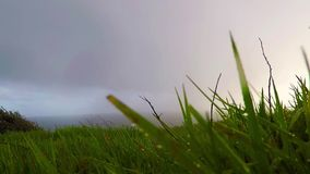Ocean view from the hill on a rainy day, green vegetation, rain, cloudy sky stock footage