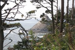 Ocean View. From the path to Heceta Head Lighthouse in Oregon Stock Photography