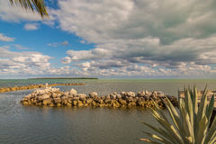 Ocean View With Palm Trees and Rocks and Beautiful Clouds Royalty Free Stock Images