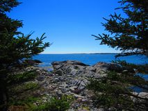 Ocean view from a rocky shore between two pine trees. View of rocky shoreline, view of ocean from between two pine trees, with an island or mainland in the Royalty Free Stock Photography