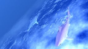 Ocean. View of ocean from space, in the fog with the sharks Royalty Free Stock Photo
