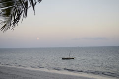 Ocean view at sunrise.Kenya. Coast of Mombasa, Kenya, ocean,  evening. Empty space for copy, text Royalty Free Stock Photo