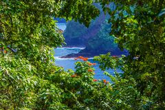 Ocean View through the Trees in Hana, Maui Hawaii stock images