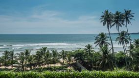 Ocean View Tropical Sri Lanka View Timelapse 4k. Timelapse of some palm trees with the ocean in the background in Sri Lanka. 4k footage stock video footage