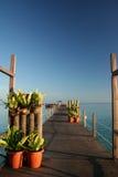 Ocean walkway mabul island borneo Stock Images