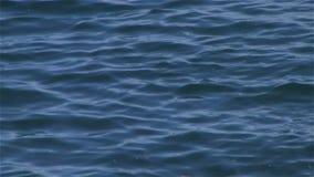 Ocean water background stock video footage