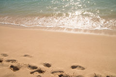 ocean water at the sand beach Stock Photography