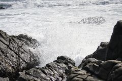 Ocean water splash the rock. Ocean water splashes the rock at Morro Bay, USA stock photography