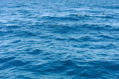 Ocean water surface texture. Deep sea waves Stock Images