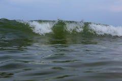 Ocean Wave Blue Water Ocean Wave blue swells crashing curling. Breaking sea water Royalty Free Stock Photo