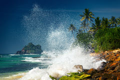 Ocean wave Royalty Free Stock Photo