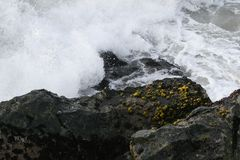 Ocean wave splashing on rock. An ocean wave forcefully splashing around a rock. Great background picture royalty free stock photography