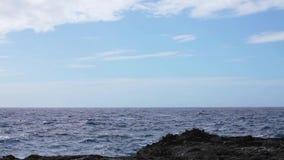 Ocean wave splash on the reef video stock video