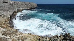 Ocean wave splash on the reef video.  stock video