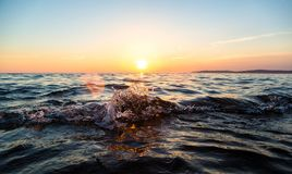 Ocean wave at sunset Royalty Free Stock Photo