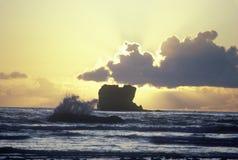 Ocean wave at sunset, WA Stock Photography