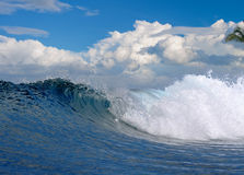 Ocean wave in tropical paradise stock image