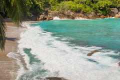 Ocean wave on a wild sandy beach stock images