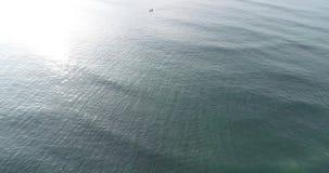 Ocean waves. Aerial view. Aerial drone footage of ocean waves stock video footage