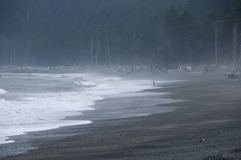 Ocean Waves on Beach in the Mist Stock Photography