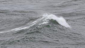 Ocean waves breaking. Huge waves of the ocean breaking, slow motion from 60 FPS footage stock video footage