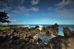 Ocean waves crash on the lava rocky coast at Laupāhoehoe Point Stock Photography
