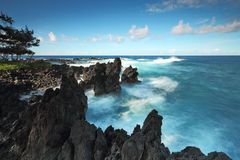 Ocean waves crash on the lava rocky coast at Laupāhoehoe Point Royalty Free Stock Photography