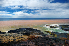 Ocean waves crashing on rocks Stock Photography