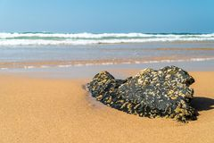 Ocean Waves Crushing On Beach Shore stock photos