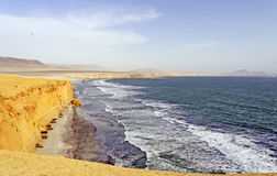 Ocean Waves on a Desert Coast royalty free stock photos
